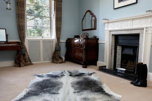 Crix House dog show, Hatfield Peverel cowhide rugs, cowhide cushions, cowhide bags