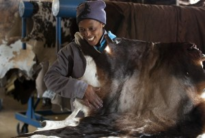 Nguni cowhide rugs, cowhide, home interiors, sustainable, ethical luxury