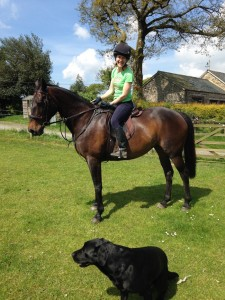 riding, Burghley horse trials, cowhide, cowhide bag, cowhide rugs, cowhid belts, Zulucow